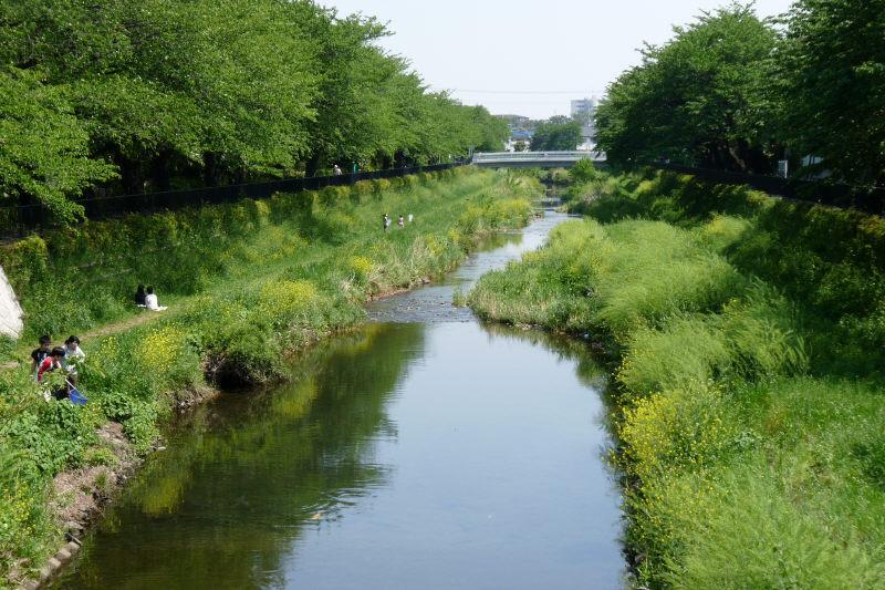 野川の川遊び | 大分の国東人